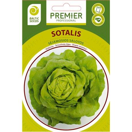 SOTALIS, salotos 500 sėklų