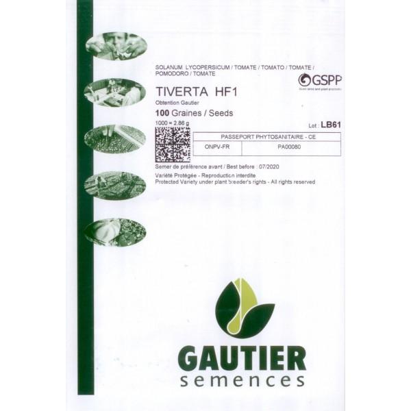 TIVERTA HF1, valgomieji pomidorai, 100 sėklų - GAUTIER PAKUOTĖ