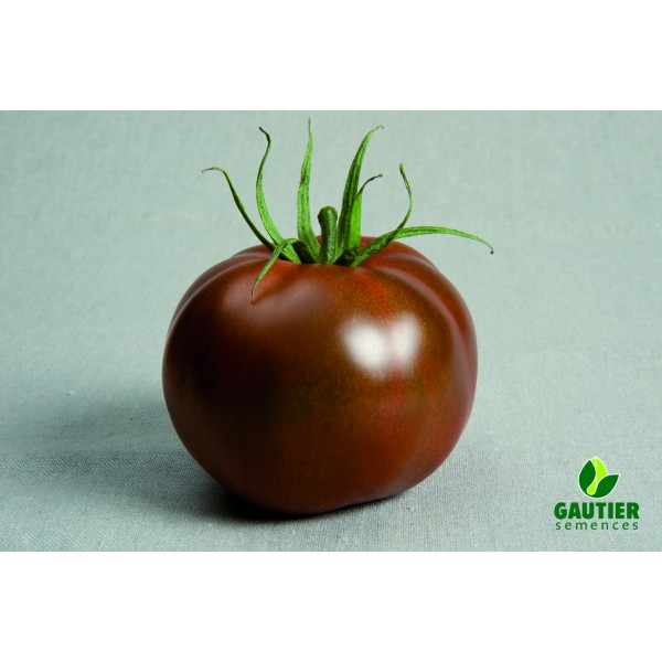 Ypatingo skonio juodieji pomidorai KAKAO HF1