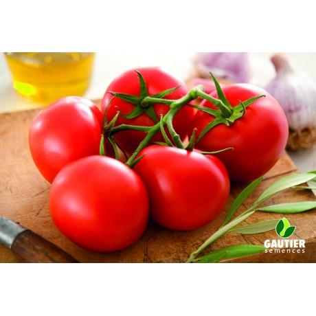 KALIXO HF1, valgomieji pomidorai, 100 sėklų