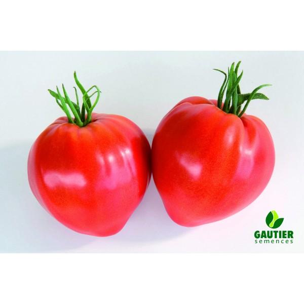 Jaučio širdies tipo pomidorai CAURALINA HF1