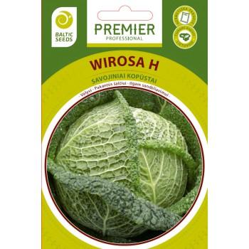 Savojiniai kopūstai WIROSA H, 20 sėklų