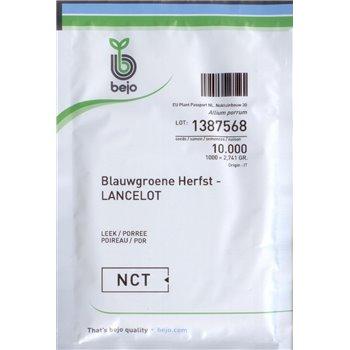 LANCELOT - Blauwgroene Herfst, porai, 10 000 sėklų