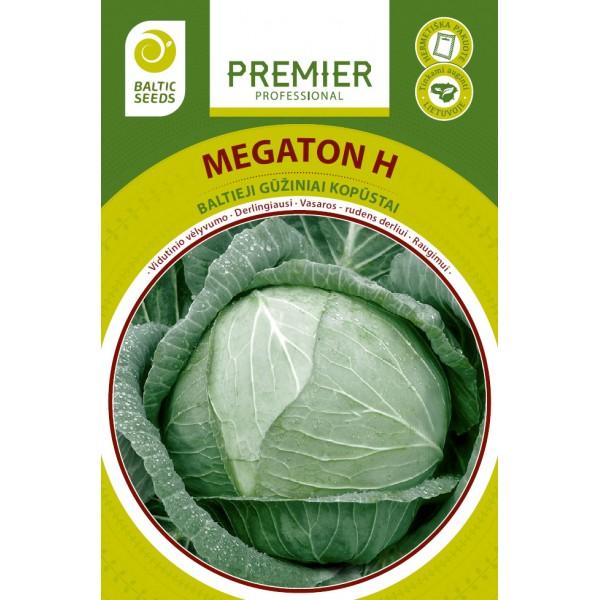 MEGATON H, baltieji gūžiniai kopūstai, 45 sėklos