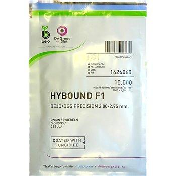 Ropiniai svogūnai HYBOUND F1, 10000 sėklų