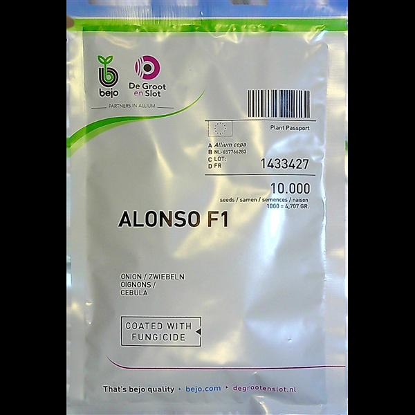 Ropiniai svogūnai ALONSO F1, 10000 sėklų