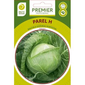 PAREL H, baltieji gūžiniai kopūstai, 30 sėklų
