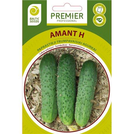 AMANT H, savidulkiai agurkai, 20 sėklų