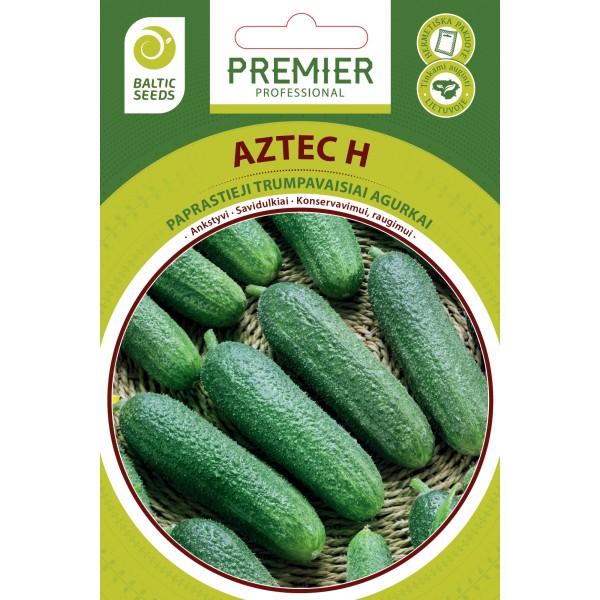 AZTEC H, savidulkiai agurkai, 20 sėklų