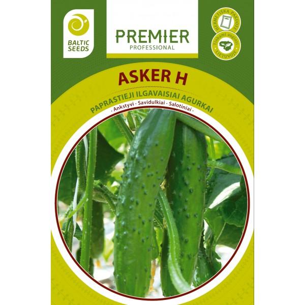 ASKER H, savidulkiai ilgavaisiai agurkai, 15 sėklų