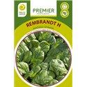 REMBRANDT H, daržiniai špinatai (ankstyvi), 300 sėklų