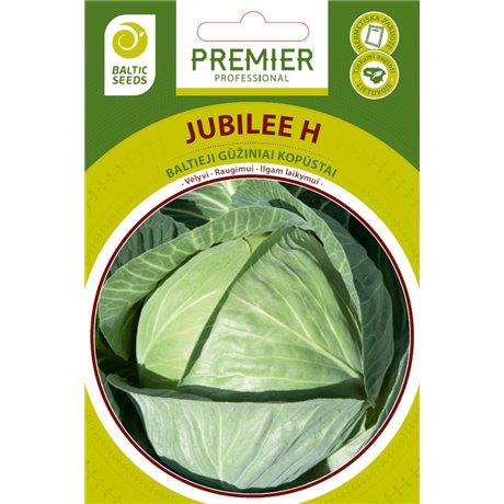 JUBILEE H, baltieji gūžiniai kopūstai, 45 sėklos
