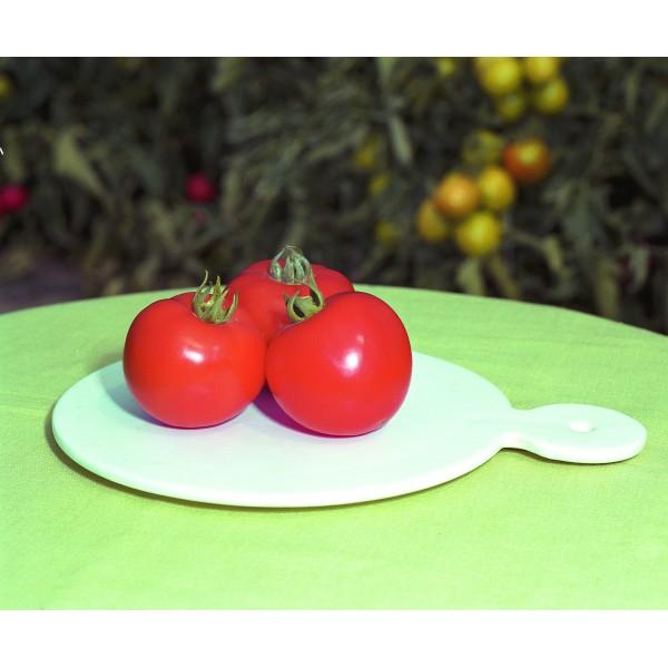 POLFAST H, valgomieji pomidorai