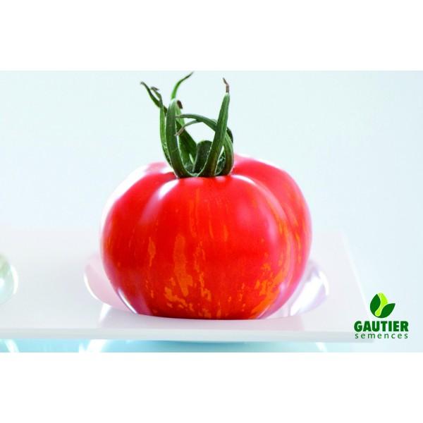 TIROUGE HF1, valgomieji pomidorai, 100 sėklų