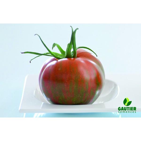 TIMENTA HF1, valgomieji pomidorai, 100 sėklų