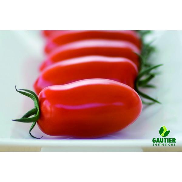 DELICASSI HF1, valgomieji pomidorai, 100 sėklų