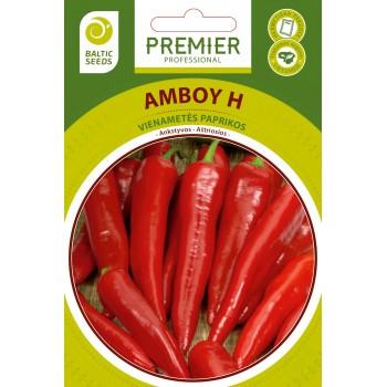 AMBOY H, 10 sėklų